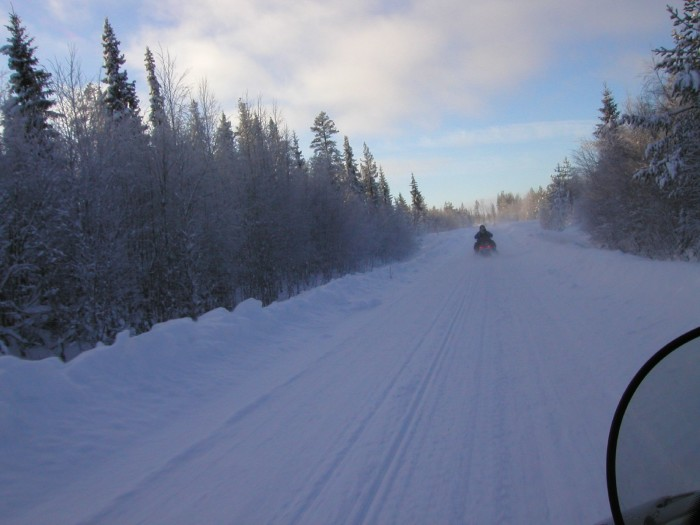 Snowmobiling down forest roads.