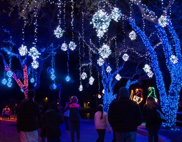 1) Festival of Lights (Galveston)