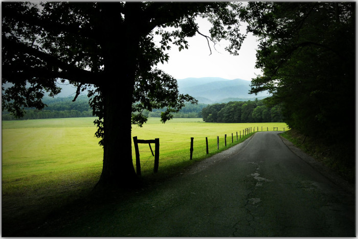 4) A back road to wander.
