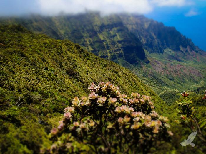 4) Kalalau Trail