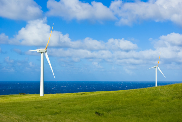 4) The first federally funded windmill was built on the Big Island's Kahua Ranch, in 1980.