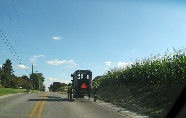 12. Are you Amish?