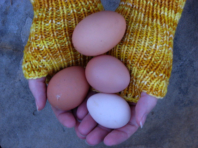 4. Iowa is also the nation's leader in egg production.