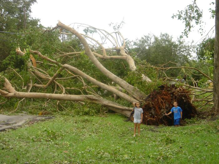 3. Hurricanes