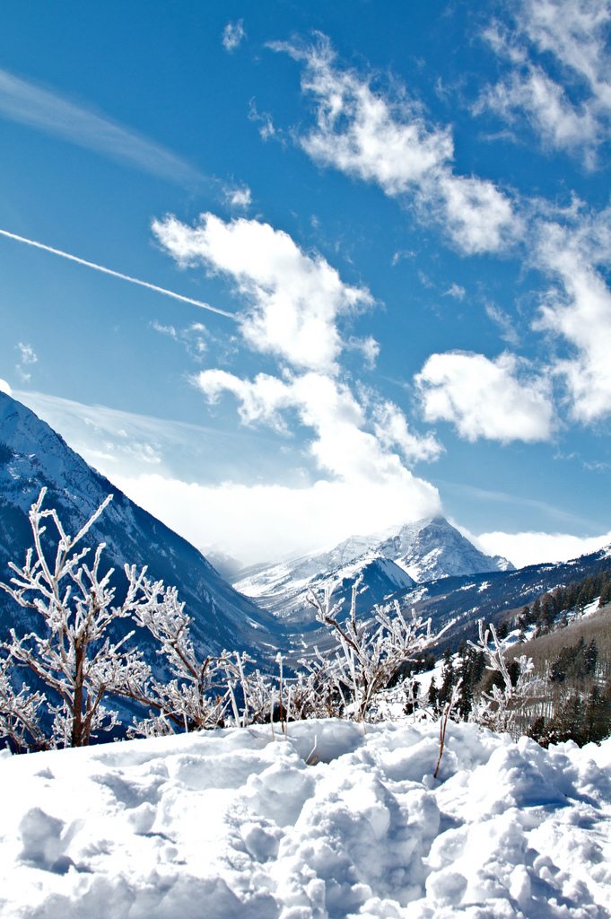 5. The entire state looks picture perfect with the soft blankets of snow.