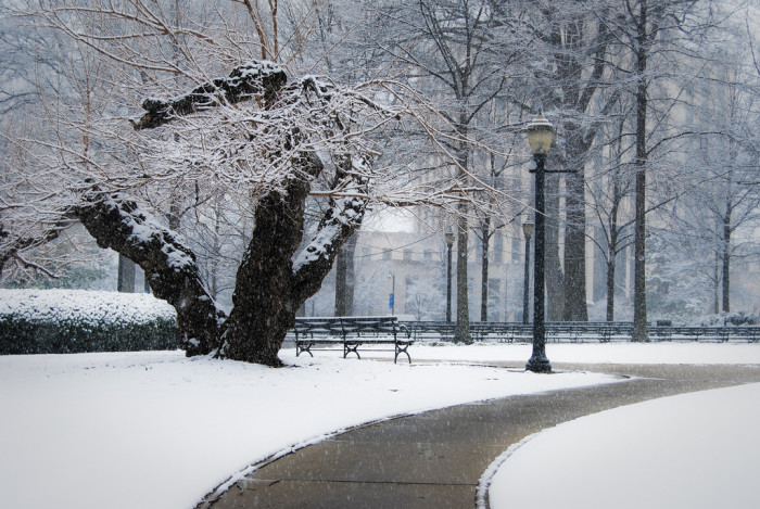 7. What a GORGEOUS winter view of Linn Park in Birmingham!
