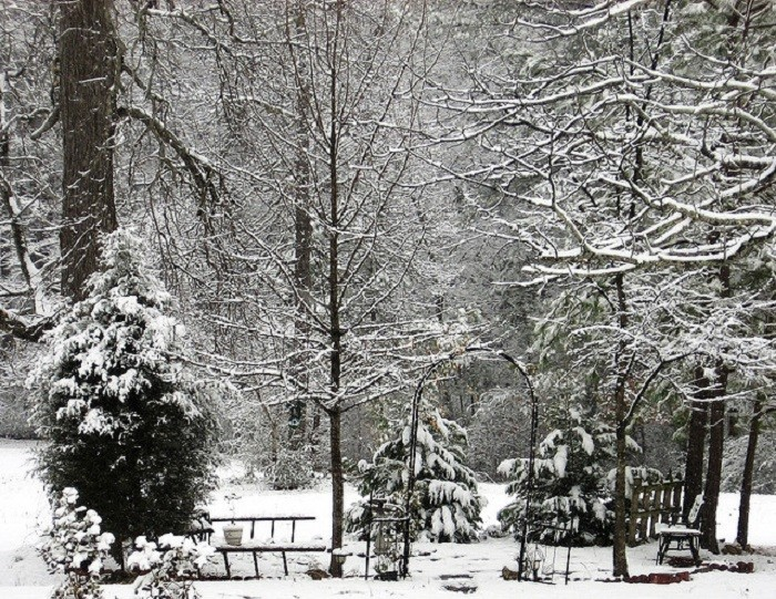 4. Can you imagine seeing this winter scene outside your window? BEAUTIFUL!