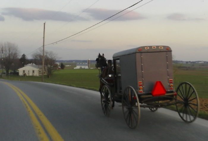 9. Pulling out onto the road behind an Amish buggy...