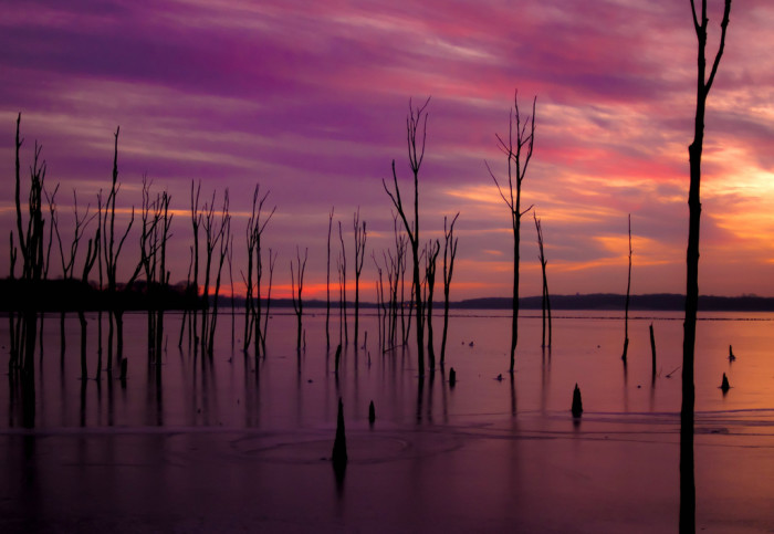 2. Manasquan Reservoir has to be one of the most surreal spots in the state.
