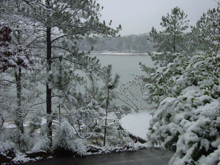 5. This is such a peaceful winter view of Jordan Lake.