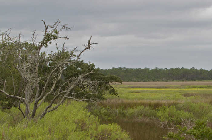 9. Head to Bald Point in Escambia County, the site of many rumors.
