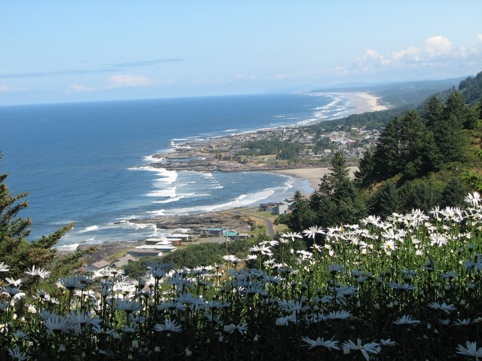 A view of Yachats from above.