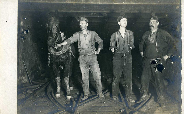 2. Did any of your family members work in a coal mine or steel mill?