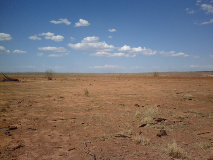 7. Less of a question and more of a general misconception is that Arizona is a barren wasteland. Isn't that how all deserts look?