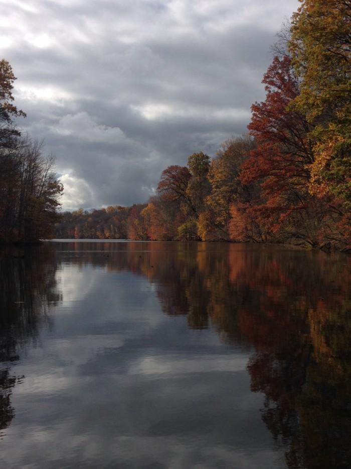 Local Photographers Capture Ohio