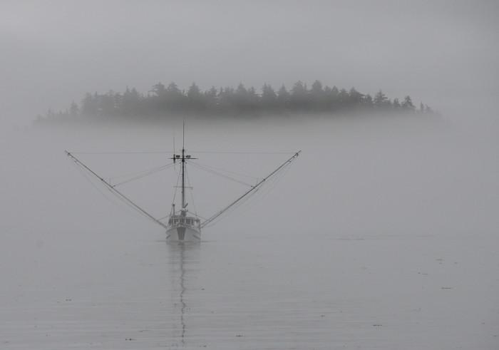 6) Foggy waters.