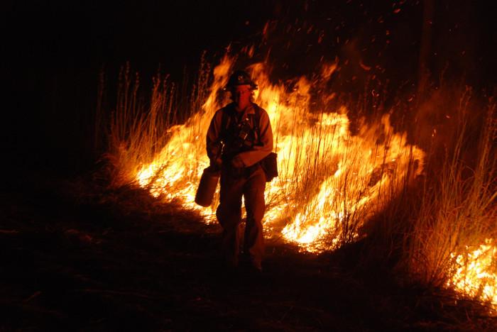 11. Wildfires