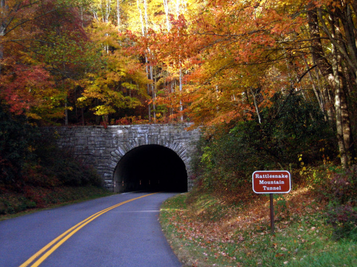 5) Colorful Rattlesnake Tunnel