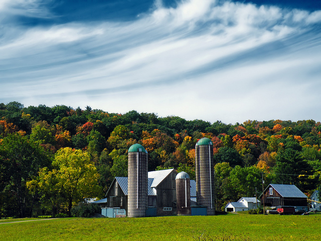 10. Pennsylvania is home to tons of farms, meaning that many of the people who live here contribute to the agriculture that nourishes our country.
