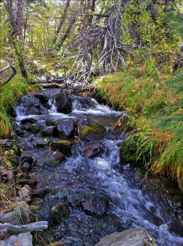 8. Thomas Creek - Reno