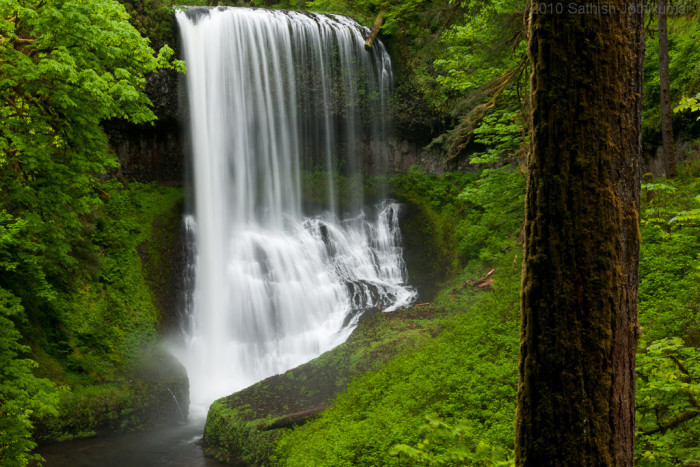 3. Silver Falls State Park.