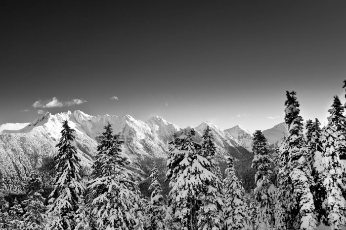 12. The snowy scenery in the Mount Baker area looks even more amazing in black and white!