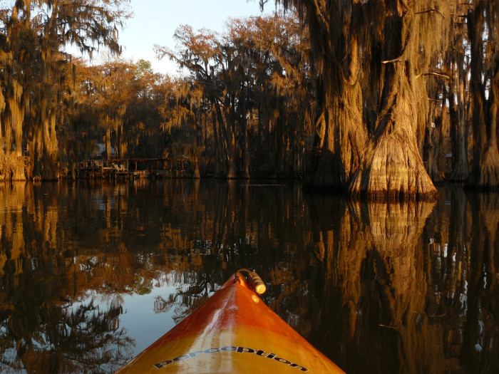8. In a Boat on the Swamp