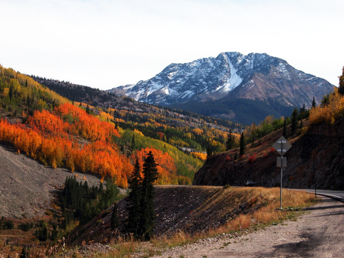 4. Cruise along the Million Dollar Highway.