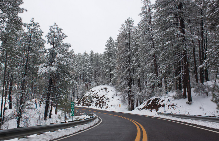 18. If you have the time and the roads are clear, take a drive through Rim Country to see a winter wonderland in person.
