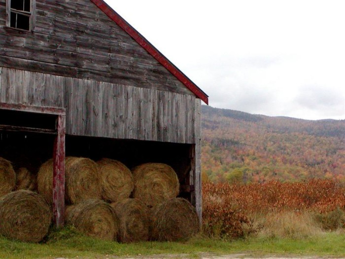 12. This barn, set against the fall foliage of Newry, makes us want to grab a sweater and some warm apple cider.