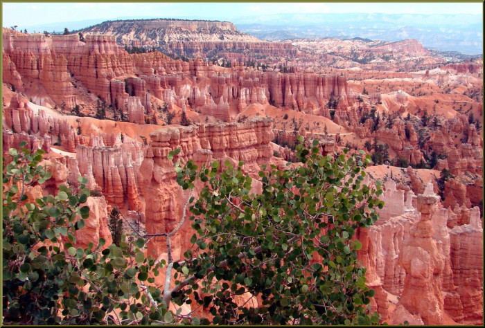 13. Take some stunning photos at Bryce Canyon National Park.