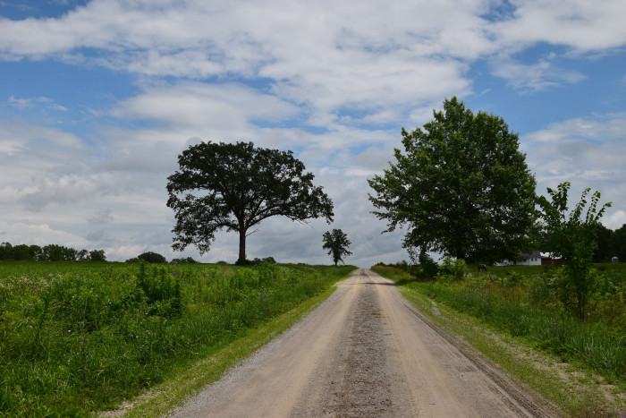 6.  All the beautiful farms and country roads.