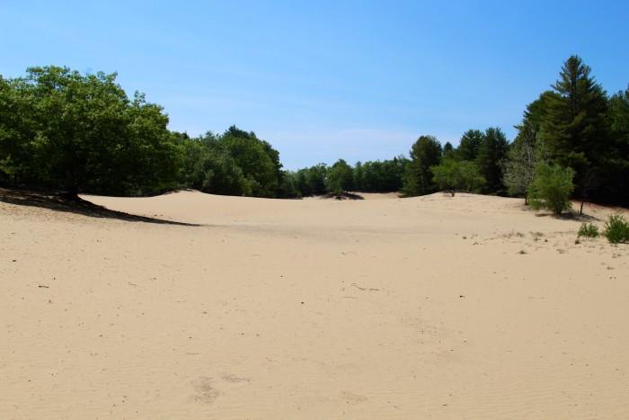 6. The ridiculous Desert of Maine.