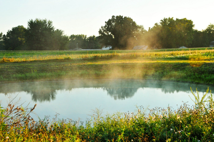 12. Fog dancing on a field pond in Kokomo.