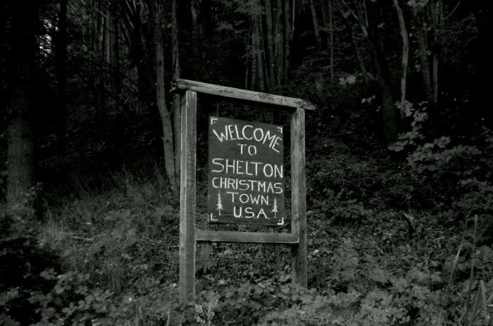 3. Shelton