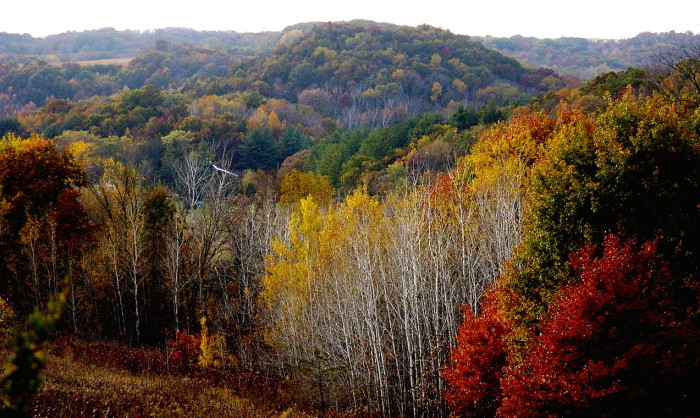 6. The four gorgeous and ever-changing seasons.