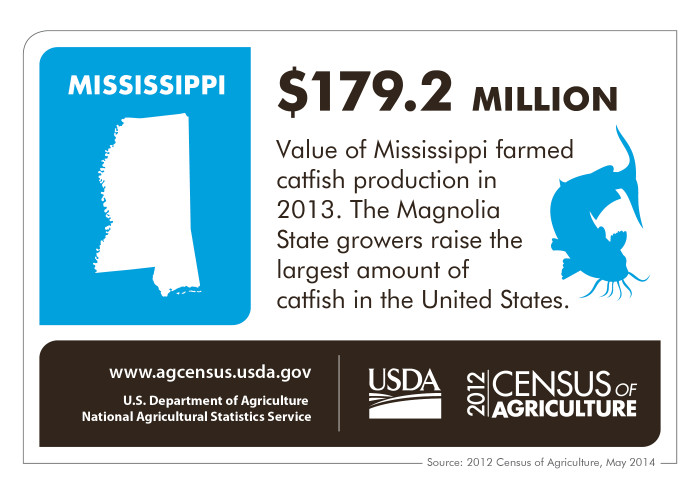 6. When it comes to fishing, Mississippi can't be beat! Residents have ample opportunities to take part in the pastime thanks to so many great water sources. And don't forget, Mississippi growers raise more catfish than any other state.