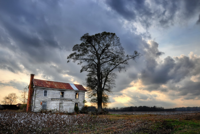 8. Abandoned beauty in a quiet field.