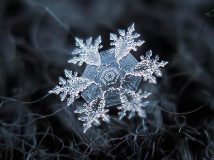 3. Snowflakes.