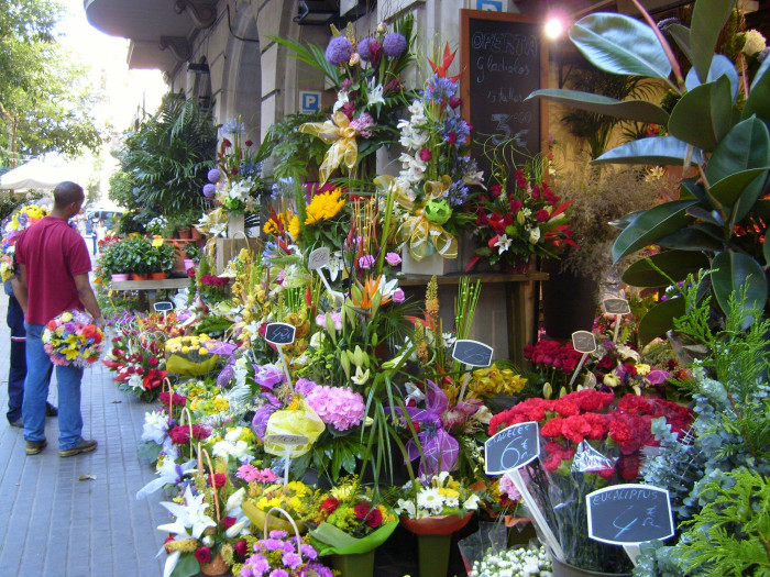 3) Florists in Louisiana are the only florists in the country who have to take an exam to receive a license.