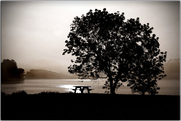 7) A most peaceful Tennessee silhouette
