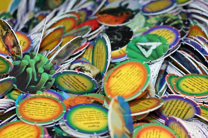 7) Remember the 1990s Pogs craze? Yeah, that was started in Hawaii when a 5th grade teacher showed her class the game she used to play as a little girl.