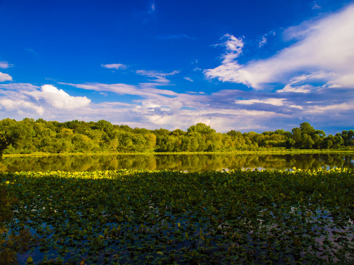 2. Another shot of the Merry Lea Environmental Center near Wolf Lake. This gorgeous shot is of Cub Lake.