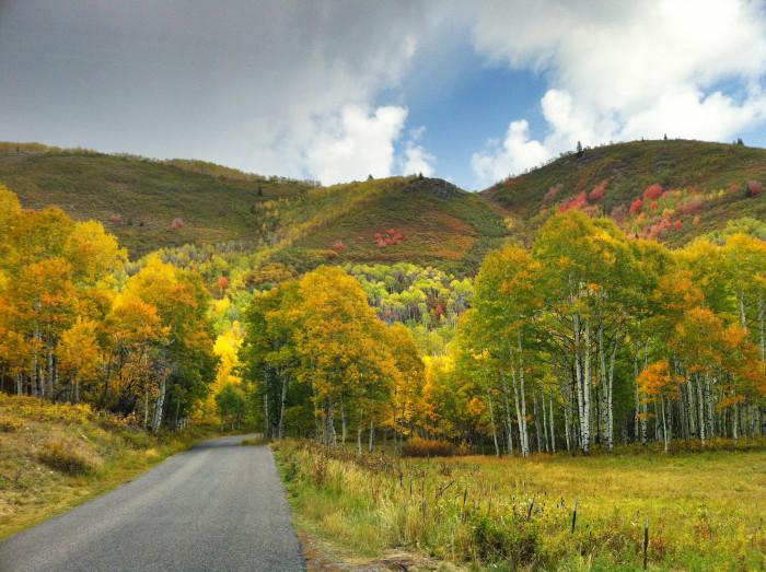 11. Drive Utah's scenic byways.