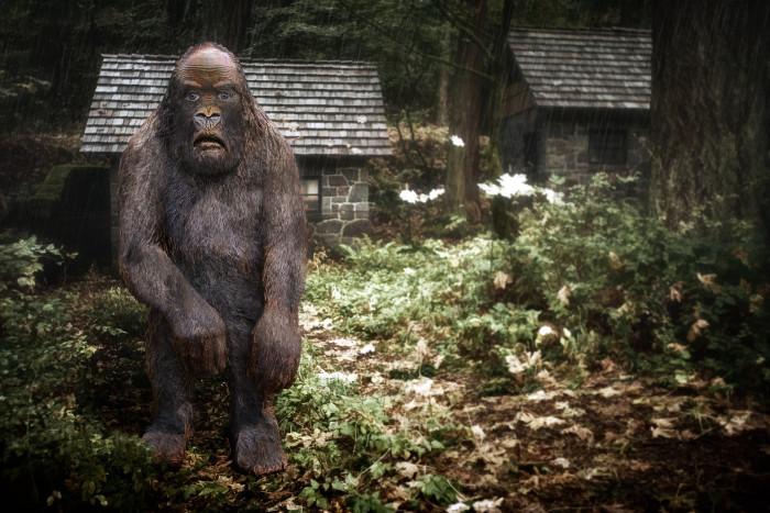 7. Do you guys believe in bigfoot?