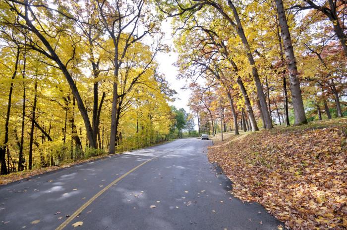 8. The bright, crisp fall days.