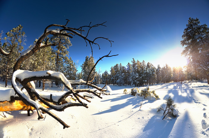 1. Despite what others think, winter in Arizona, especially this year, for sure means encountering snow.