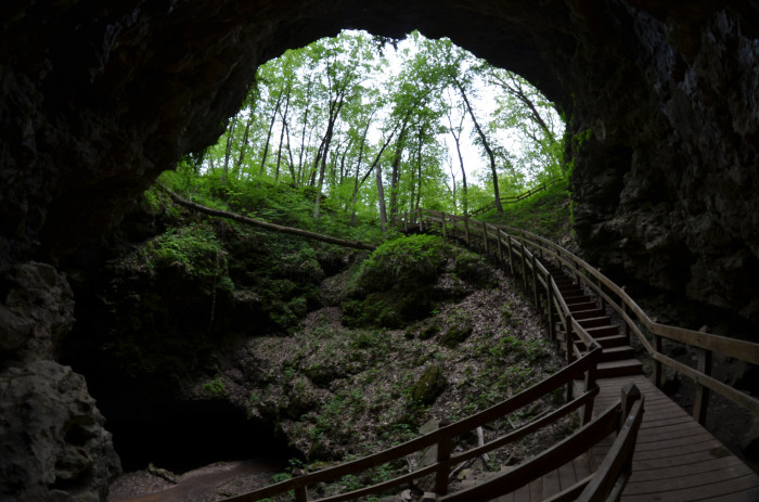 8. The magical, subterranian paradise you will find at Maquoketa Caves State Park.
