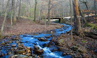 2. Creeks & Bridges in Jasper, GA