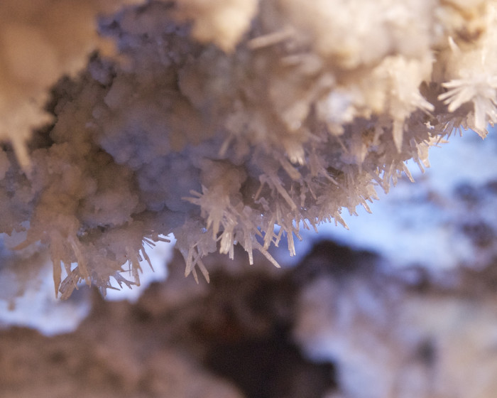 16. What you'll find in any of our living caves? Formations still growing, such as these crystals seen in Cave of the Bells.